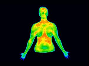 Upper Body Thermo